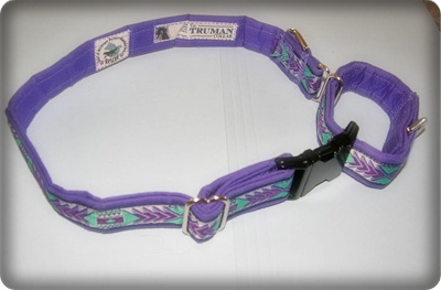 The Truman Collar has features that are important to our Rescue Program